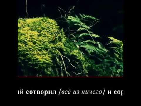 СУРА 87 ВЫСОЧЯЙШИЙ (АЛЬ-А'ЛЯ)