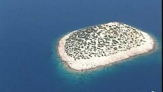 Croatie : Parc national Kornati