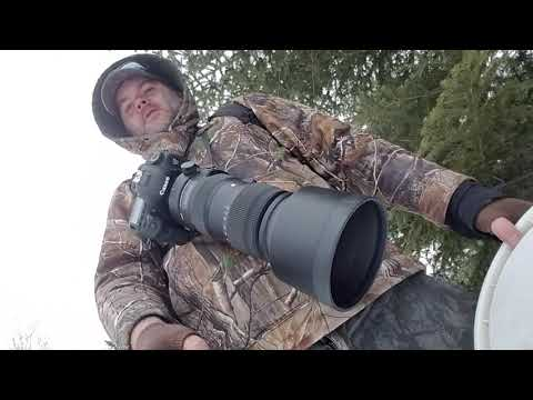 Cheap Photography Monopod