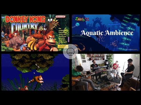Donkey Kong Country - Aquatic Ambience | EXTRA LIVES COVER