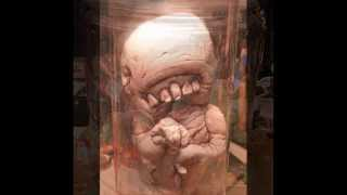Pickled Punk Video, freaky little monsters in jars
