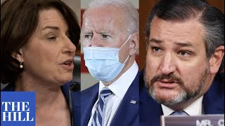 Amy Klobuchar defends Joe Biden after Ted Cruz attack