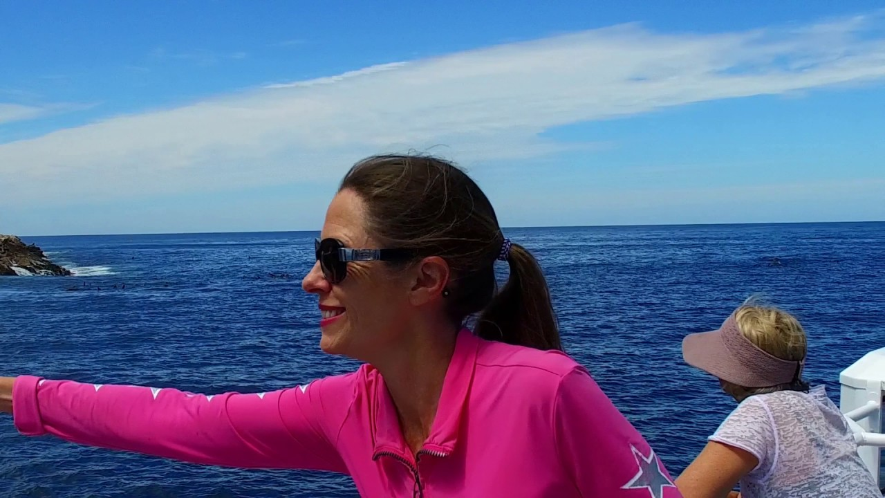video Maria Island Cruise & Walk Day Tour