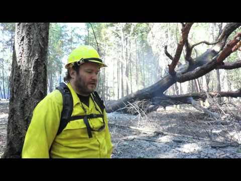 Bacon Flat Burn in Orleans - Madrone Fisher Habitat