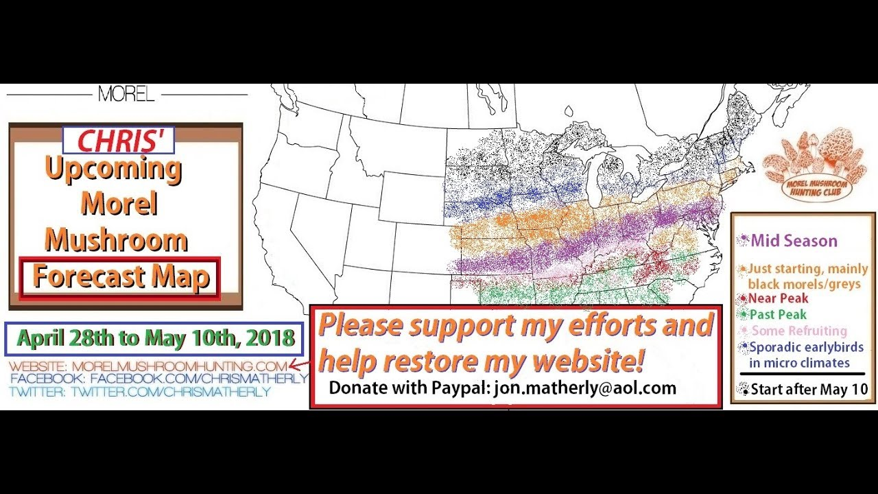 Morel Mushroom Michigan Map.Current 2018 Morel Progression Maps And Forecast Maps Youtube