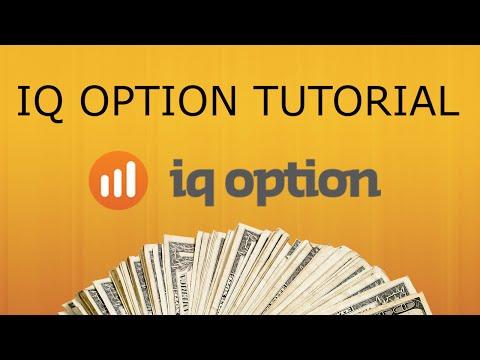 HOW TO USE IQ OPTION | IQ Option Tutorial