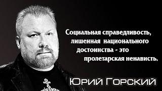 Правая альтернатива Юрия Горского.