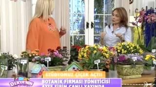 Kanal Türk 09 04