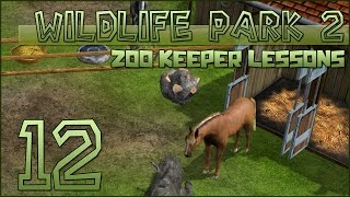 Wildlife Park 2 || Lessons at the Horse Ranch! || Episode #12