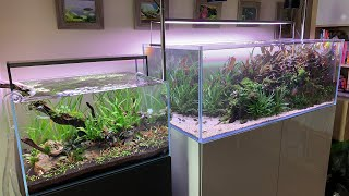 Scape School Sunday - CO2 injection in Planted Aquariums