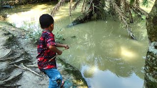 Best Fishing Video | Kids Fishing By Daily Village Life (Part-20)