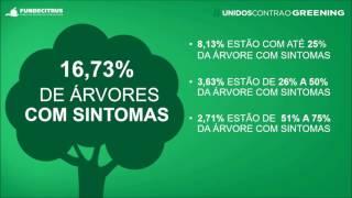 Resultados levantamento de greening 2017