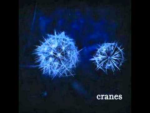 Adoration - Cranes Live in Italy