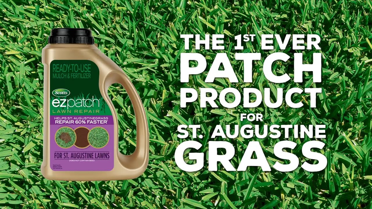 The 1st Ever Patch Product for St  Augustine Grass
