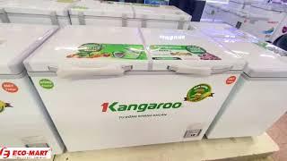 Tủ đông Kangaroo 328L KG328NC2