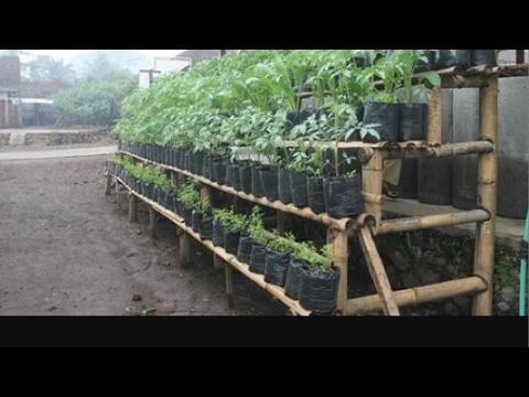 MEMBUAT RAK POT BUNGA ATAU POLYBAG Dari limbah bambu
