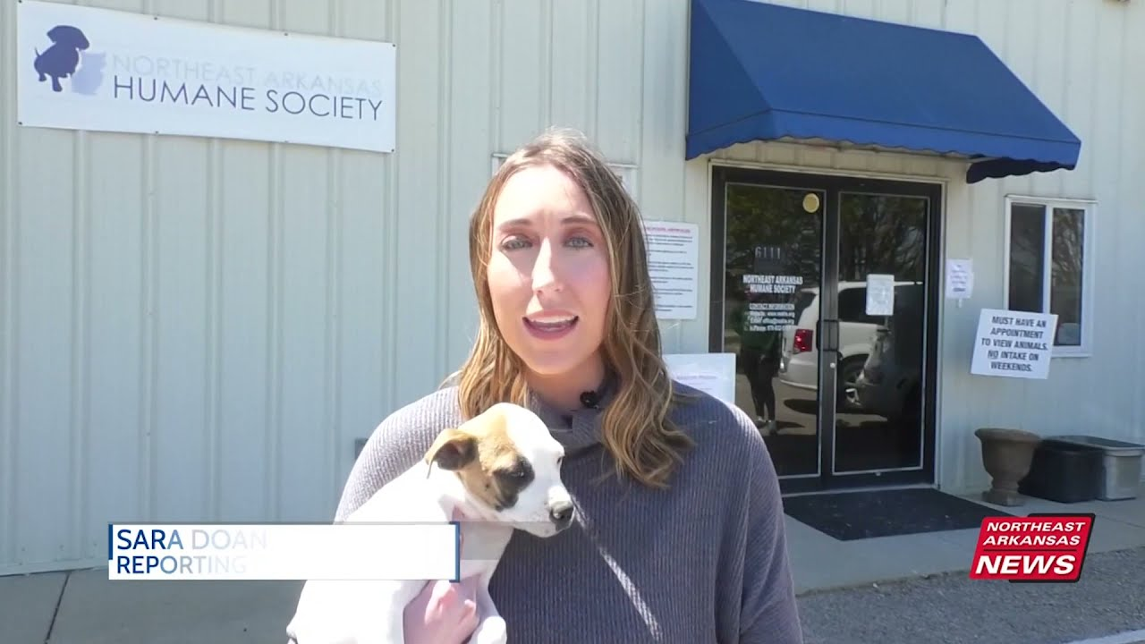 Northeast Arkansas Humane Society kicks off milestone birthday with capital campaign