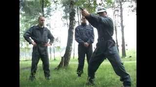 Обучение боевой стрельбе из пистолета 4