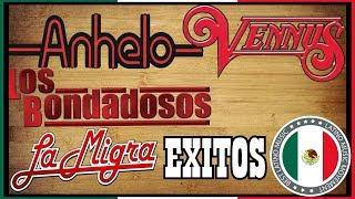 Los Bondadosos, La Migra, Grupo Vennus y Grupo Anhelo GRANDES EXITOS Sus Mejores Canciones