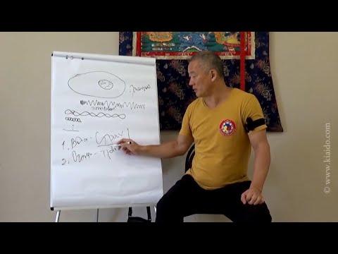 О влиянии эмоций на тело и ДНК человека