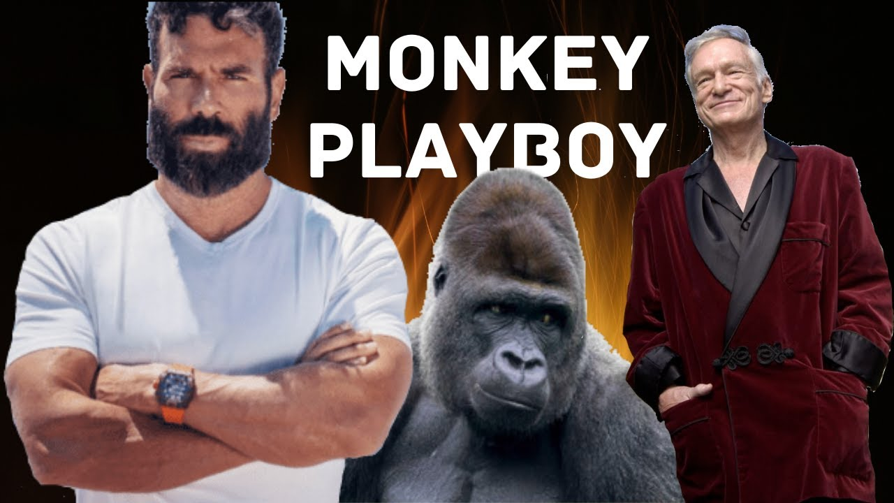 Monkey Orgy Triples Testosterone