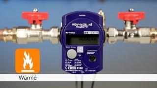 WDV-Molliné Montageanleitung WingStar S1 Standard Wärmezähler für Sensus, Metrona, ...