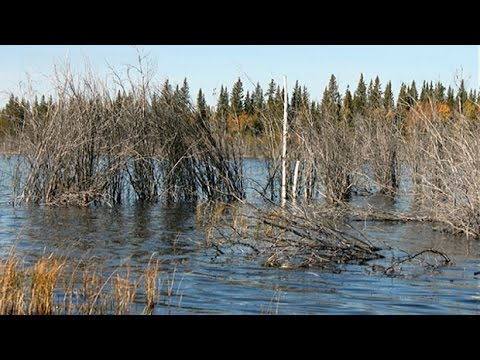 Climate mystery in N.W.T.