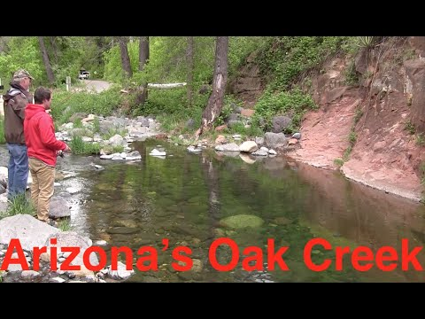 Trout Fishing Arizona's Oak Creek