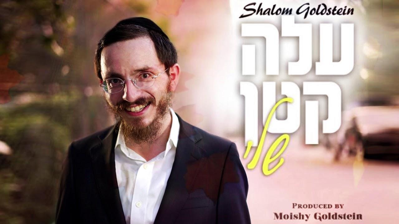 Shalom Goldstein - Aleh Katan Sheli | שלום גאלדשטיין - עלה קטן שלי
