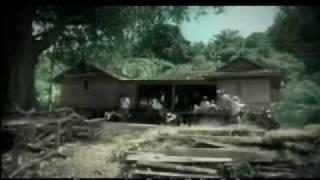 song for KING BHUMIBOL - รูปที่มีทุกบ้าน - - Bird Thongchai