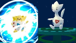 2 GEN POKEMON GO TOGETIC and ALL BABY