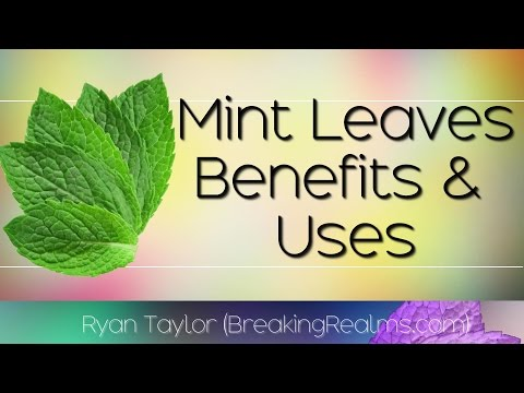 Mint Leaves: Health Benefits and Uses