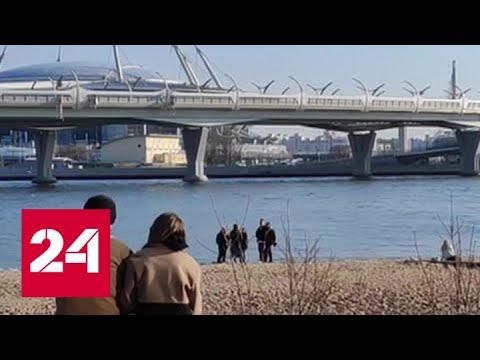 Нарушение режима самоизоляции грозит продлением карантина на месяцы - Россия 24