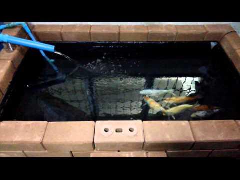 บ่อปลาคราฟอิฐประสาน+ถังกรองน้ำทำเอง.