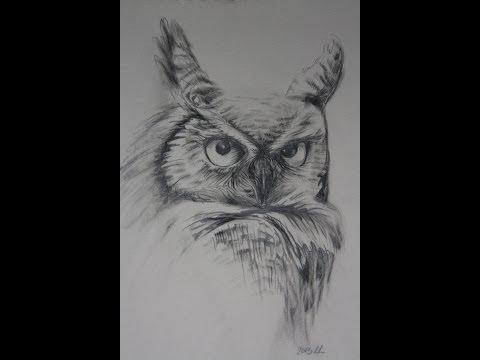 MAGNOLIA bloesem tekenen potlood tekening from YouTube · Duration:  12 minutes 12 seconds