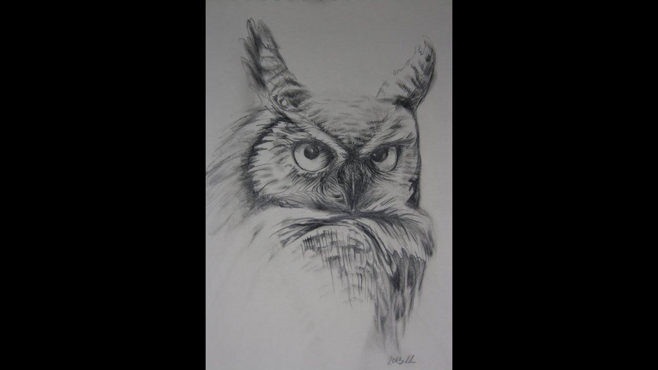 Uil Tekenen Realistisch Met Grafiet Potlood Hb En 7b