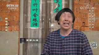 《律师来了》 20190623 耕地变坟地| CCTV社会与法