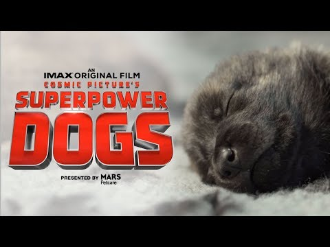 Superpower Dogs Official Trailer | Experience it in IMAX®