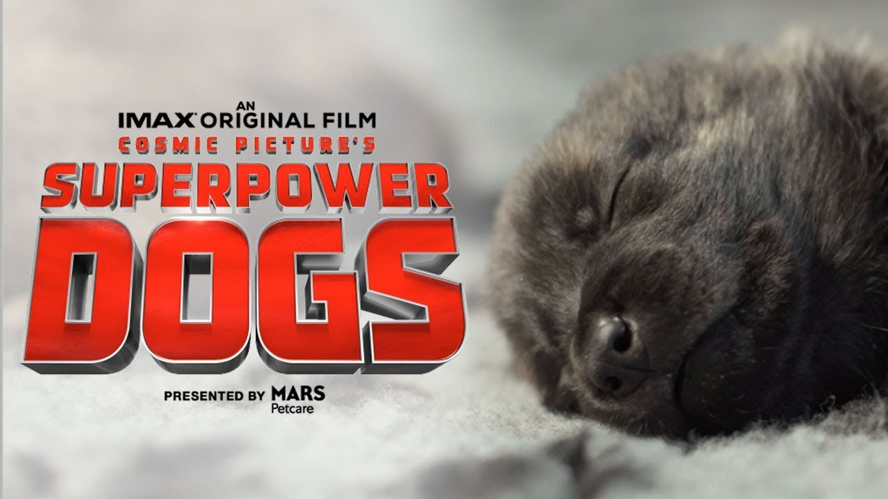First Look at The Remarkable IMAX® Documentary Superpower