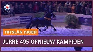 REPO: Jurre 495 wederom kampioen bij paardenkeuring
