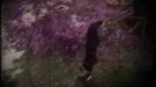 "SOPOR AETERNUS: ""Deep the eternal Forest"" (clip 2)"