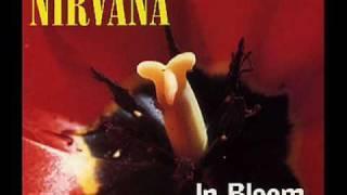 Nirvana - Sliver [live]