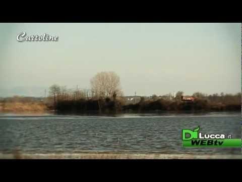 Bonifica della Gherardesca - Cartoline - Dì Lucca