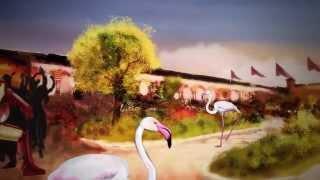 EDC Eventos de la Clase de color de Rosa Rizos _ exclusivas de la boda de dibujos animados