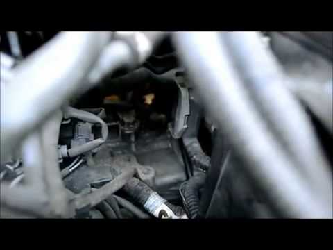 Beautiful Honda Odyssey Transmission Fluid Change
