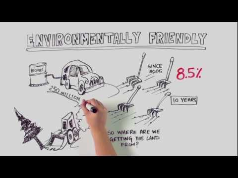 How Green are Ethanol Mandates?