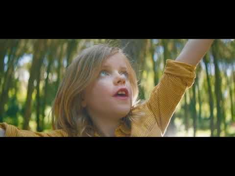 Nature Valley | Ask Nature