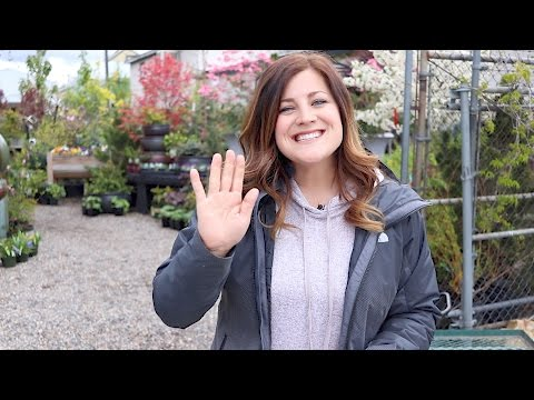 Tour of My Family's Garden Center // Garden Answer