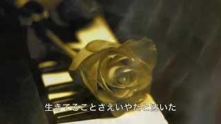 沢田研二さんの「時の過ぎゆくままに」を唄わせていただきました。 作詞...