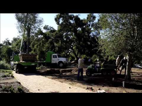 Replenishing the Meadow Oaks at SBBG | The Santa Barbara